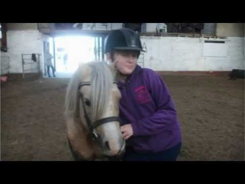 Seaview Horses & Ponies