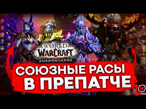КАК ОТРЫТЬ СОЮЗНЫЕ РАСЫ В ПРЕПАТЧЕ SHADOWLANDS world of warcraft 9.0.1