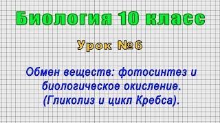 Биология 10 класс (Урок№6 - Обмен веществ: фотосинтез и биологическое окисление.)