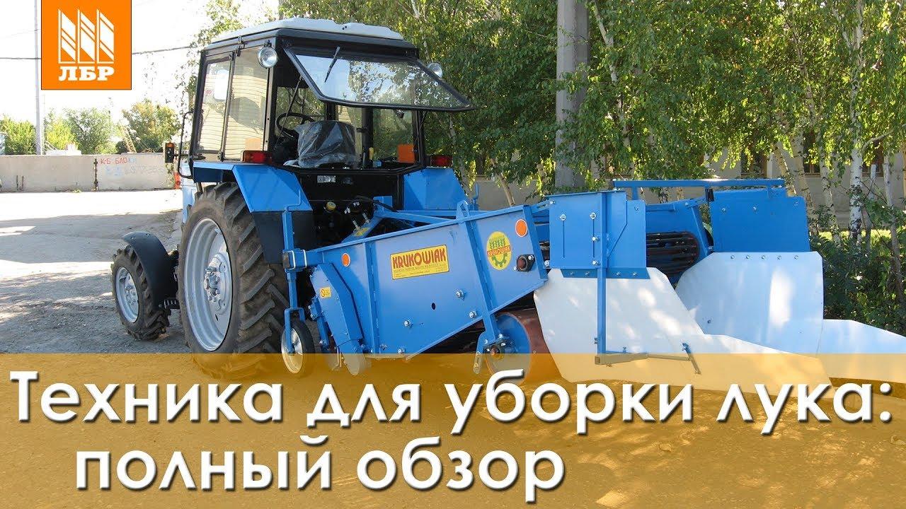Лук Каратал, где купить в России, на перо - YouTube