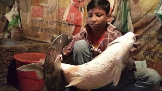 Big White Carp Fish Slice into Chunks in The Fish Market Dhaka Bangladesh