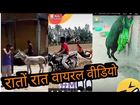 Download zili funny videos//new zili funny videos//new Comedy videos//funny videos//new funny videos*/Comedy