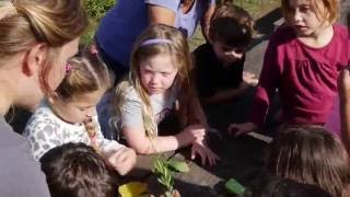 Farm to School - Program Segment