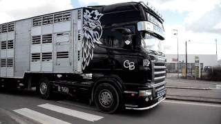 Scania R560 V8 Christophe