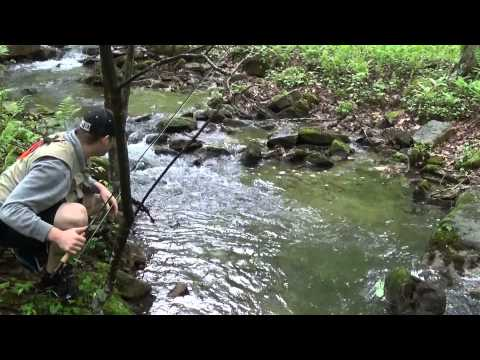 Native Brook Trout Fishing Pennsylvania 2015