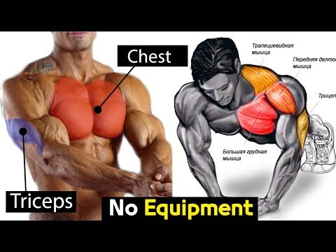 FULL EXERCISE BODYWEIGHT CHEST / TRICEPS workout