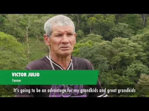 State of the World's Forests 2016: Forests and agriculture - land use challenges and opportunities