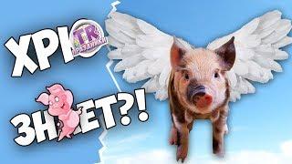 СВИНЬЯ ПЛАВАЕТ КАК ТОПОР ДА ИЛИ НЕТ Викторина на праздник Новый год свиньи