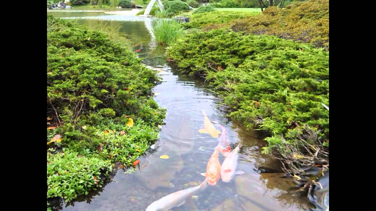 The Japanese Garden at the Montreal Botanical Gardens - YouTube