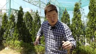 미사일 블랙 이글 컬렉션 치퍼 웨지 골프클럽