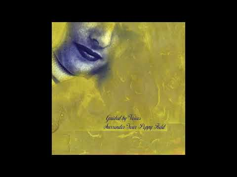 """Guided by Voices - """"Man Called Blunder"""""""