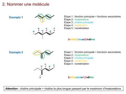3  Chimie organique  Nomenclature