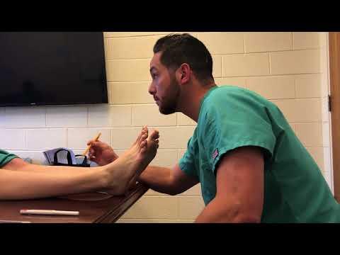 Barry School Podiatry Medicine - Podiatric Physical Examination Worksheet
