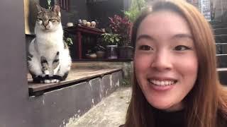 Travel Taiwan: Jiufen, Shifen, Pingxi