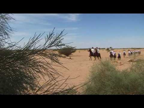 Horses and the Knights of Najran