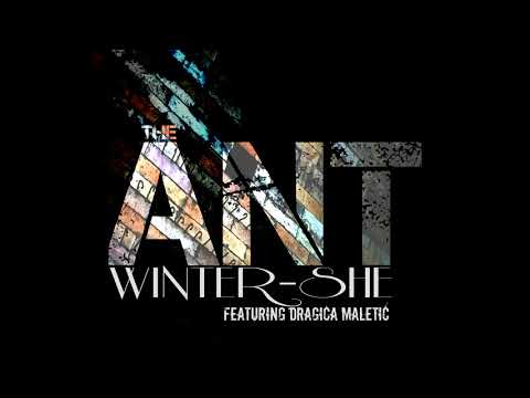 The Ant - Winter-She, feat. Dragica Maletic