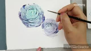Ranunculus watercolor painting러넌큘러스 그리기