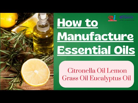 How to Manufacture Essential Oils -Citronella Oil, Lemon Grass Oil, Eucalyptus Oil, Sandal Wood Oil,