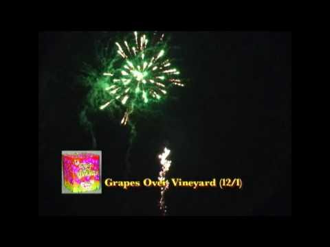 Grapes Over Vineyard