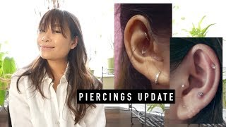 Update On My Anti-Tragus, Rook, Conch & Tragus Piercings | inspiroue