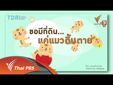 """""""ถือครองที่ดิน"""" ชี้ความเหลื่อมล้ำในไทย - วันที่ 15 Jan 2018"""