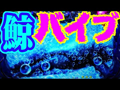 『CR大海物語4 ㉟』超ド級プレミア★鯨バイブ
