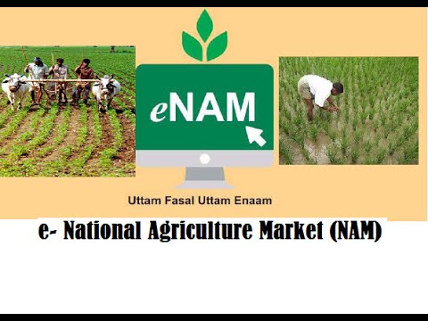 e- National Agriculture Market (NAM) : everything you need to know
