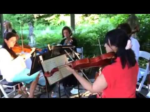 Waterbury Symphony Orchestra at Mill House Antiques
