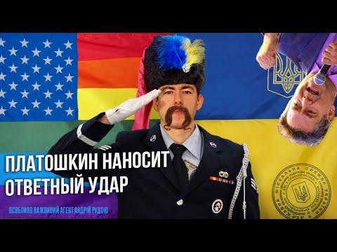 ПЛАТОШКИН НАНОСИТ ОТВЕТНЫЙ УДАР/Стрим на Вестнике Бури
