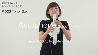 Roland Aerophone AE-10 Sound Preview