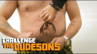 Download Video Live Crabs Into Pants! - The Dudesons MP3 3GP MP4
