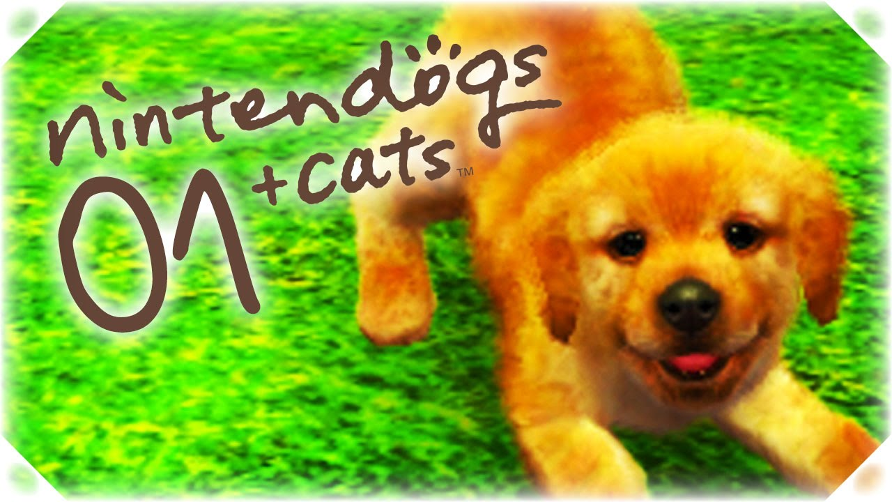 Let S Play Nintendogs Cats