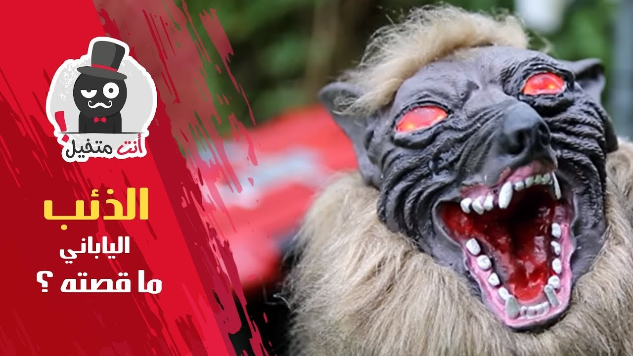 ما قصة الذئب الياباني الذي اجتاح مواقع التواصل؟