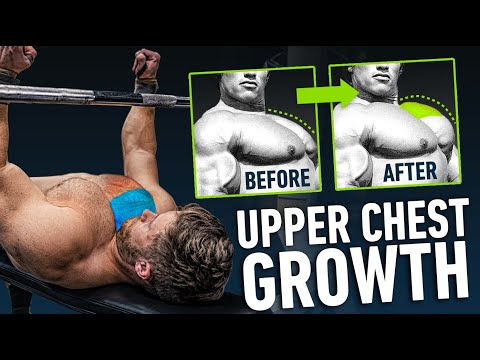 The Fastest Way To Blow Up Your Upper Chest (4 Science-Based Steps) + Sample Program