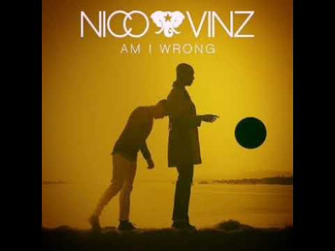 DOWNLOAD MÚSICA |AM I WRONG| NICO E VINZ(LINK MEDIA FIRE)