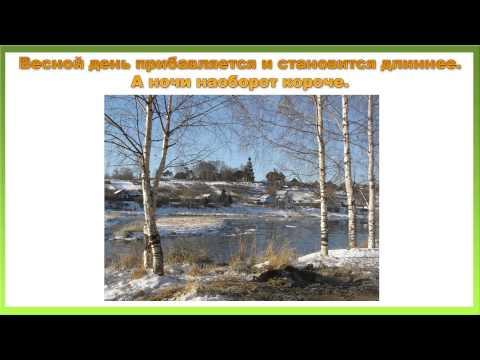 Видео Скачать презентацию на тему математика