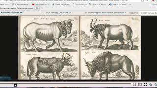 УДИВИТЕЛЬНЫЕ ЖИВОТНЫЕ Книга Яна Йонстона «Описание чудес природы