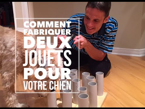 diy comment fabriquer deux jouets pour votre chien youtube. Black Bedroom Furniture Sets. Home Design Ideas