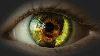Prisoner Within (Book Trailer)