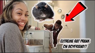 HUGE RAT PRANK ON BOYFRIEND!! **HILARIOUS**