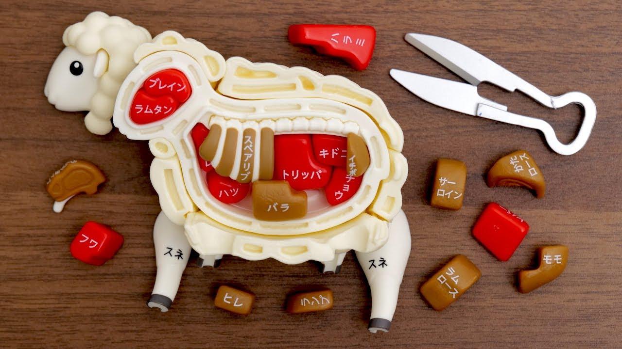 羊の解体パズルとルームツアーを少し。Sheep Dissection Puzzle. Room Tour. Japanese toy. lamb