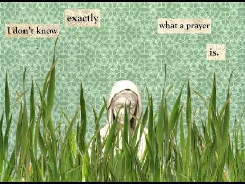 The Summer Day:  Animated Poem By Mary Oliver