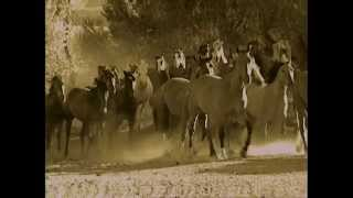 The Hideout Lodge Wyoming,USA Vacations & Travel Videos