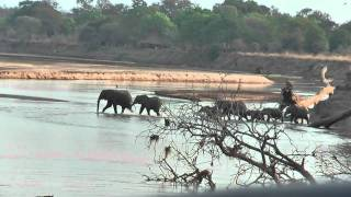Zambia Tafika Area South Luangwa by day.mpg