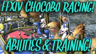 FFXIV Chocobo Racing: Abilities & Training! (+ Selfie Competition!)