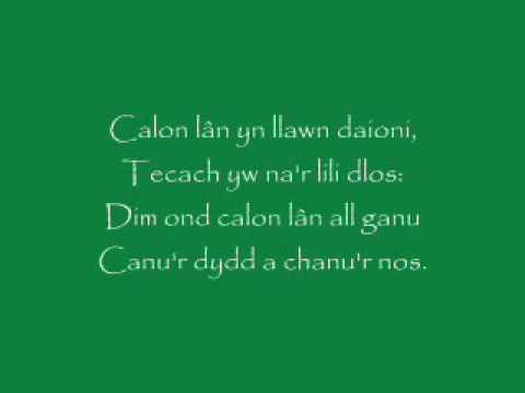 Calon Lan/A Pure Heart - Cymdeithas Madog