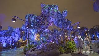 [4k] Avatar Land at Night - Pandora: World of Avatar - Bioluminescence