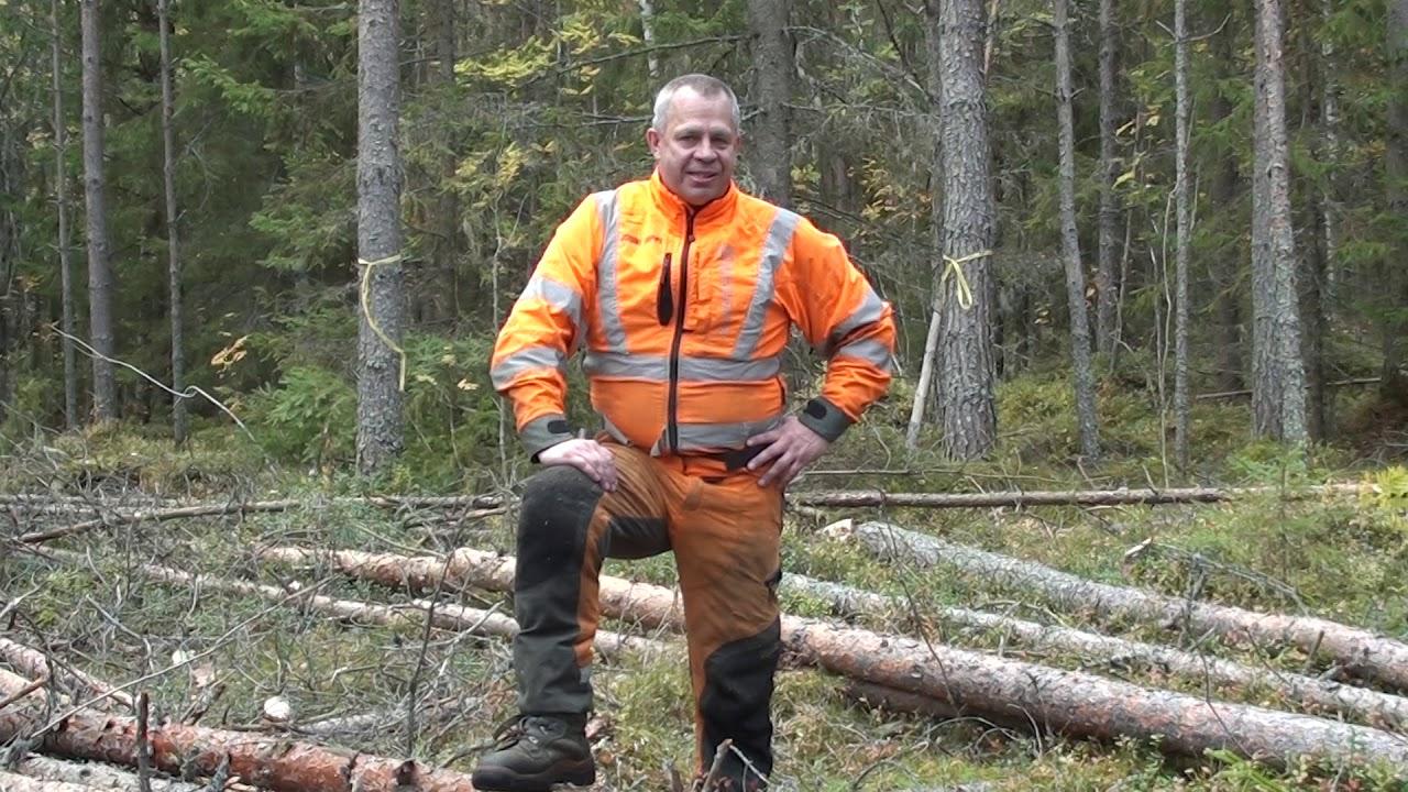Metsäkoulu