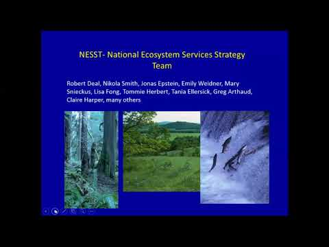 Ecosystem Services and National Forest Policy