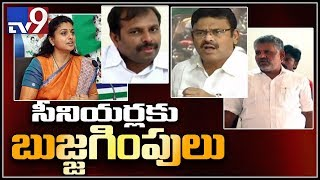 YCP Senior leaders upset with Jagan over Cabinet expansion - TV9